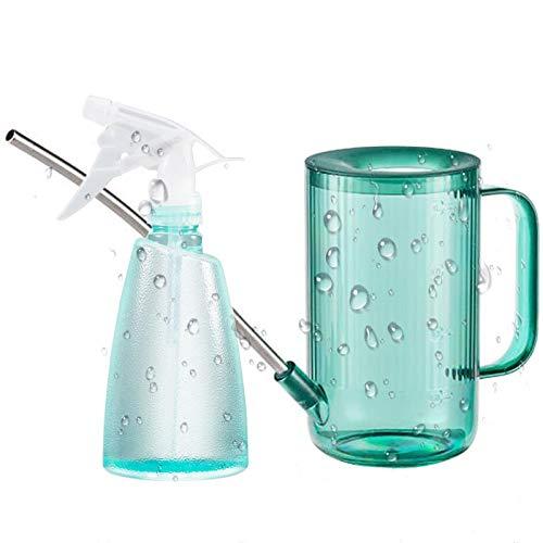 1 Liter Gießkanne mit Langer Auslauf + 500 ml feiner Sprühflasche, Edelstahl-Wassertopf mit langem Ausguss Gießnebel-Sprühflasche für Pflanzpflanzen im Innenbereich Sukkulenten Blumen (Emerald)