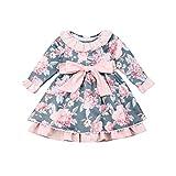 Vestido de Bautizo para Bebé Niñas Pequeñas Vestidos Florales de Manga Larga con Volantes y Bowknot para Princesa Vestido de Tutú de Cintura Alta para Fiesta Boda Ceremonia (Rosa, 2-3 Años)