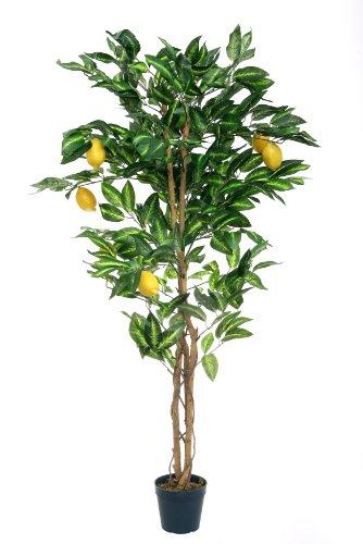 McPalms Zitronenbaum 1,40 m künstlich Kunstbaum Kunstpflanze Echtholzstamm