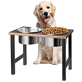 AISHNA Elevated Dog Bowl Iron Stand Large, Raised Dog Pet Feeder Iron Wooden Stand with 2 Removable Stainless Steel Bowls, Perfect for Large Dogs