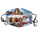 Blingko Weihnachten Lustige Mundschutz Erwachsene Mund Und Nasenschutz Mit Motiv 3D Drucken Atmungsaktiv Staubdicht Verstellbar Waschbar Wiederverwendbar Bandana (D)