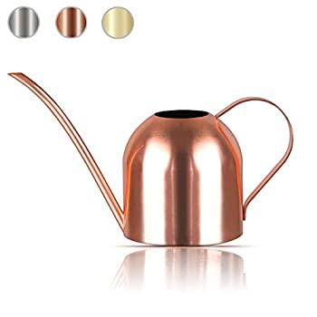 Lilycase Watering Can Indoor Outdoor for Kids House Desk Office Plants and Garden Bonsai Stainless Steel  15oz  Copper