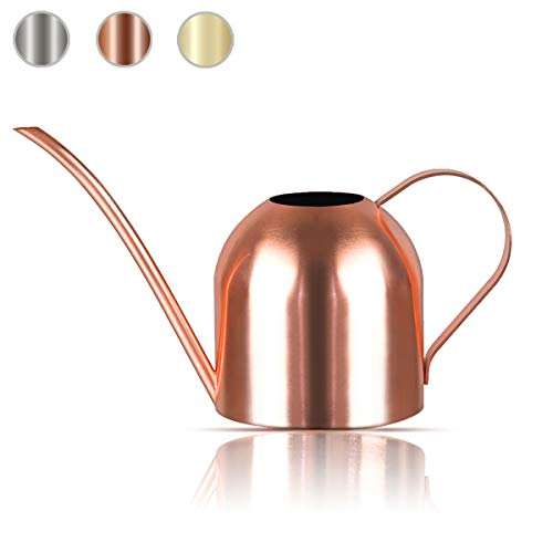 Lilycase Watering Can Indoor Outdoor for Kids House Desk Office Plants and Garden Bonsai Stainless Steel (30oz-Copper)
