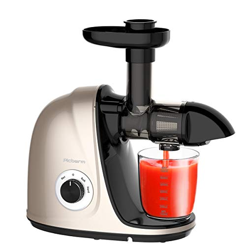 Juicer Machine, Picberm PB2110N Slow Masticating Juicer for Nutrients Preservation, Easy to Clean, Quiet Motor, Cold Press Juicer with Brush, Recipes for Fruits and Vegetables (Champagne)