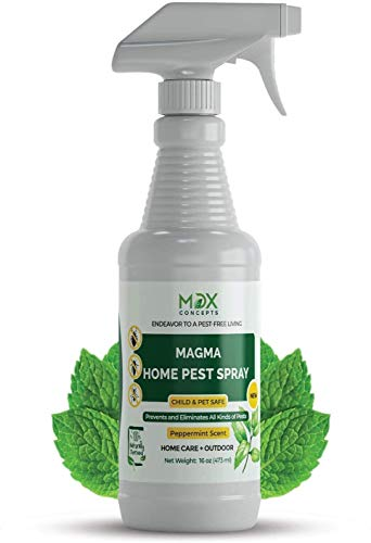 mdxconcepts Organic Home Pest Control Spray - Peppermint Oil - MADE IN USA - Kills & Repels, Ants, Roaches, Spiders, and Other Pests Guaranteed - All Natural - Pet Safe - Indoor/Outdoor Spray - 16oz
