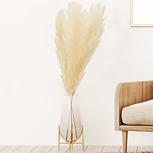 Pure and Delightful Pampas Grass Decoration Stems 4 Ft Tall - 3 Real Large Dried Plants for Floral Bouquet Centerpiece Prop Home Arrangements - Vase Dry Filler Flowers Wedding Beige - Low Maintenance