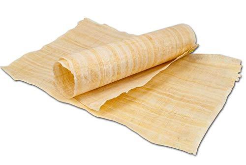 Forum Traiani Papyrusblatt, echtes Papyri Blatt, handgelegtes Papyrus Papier, Papyrus-Rolle aus Ägypten, Unterrichtsmaterial Geschichte Naturprodukt