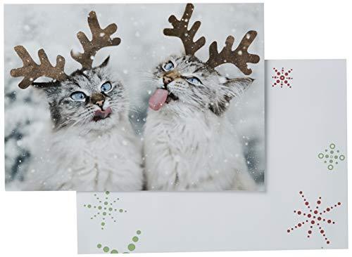 Avanti Press Avanti 10-Count Christmas Cards, Reindeer Cats Catching Snowflakes (701732)