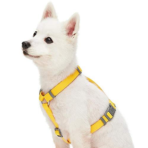 UMI. Essential - Arnés clásico Ajustable para Perros