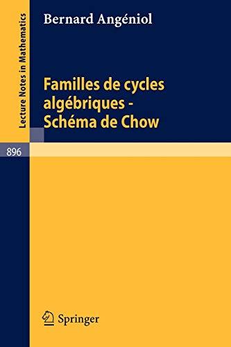 Familles de Cycles Algébriques - Schéma de Chow (Lecture Notes in Mathematics (896), Band 896)