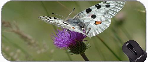 Alfombrilla de ratón extendida xxl, mariposa astra rusalka jardín naturaleza oficina mouse