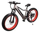 "E-Fatbike ""Fat Tiere Subcross"" 26 Zoll 500 Watt E-Bike Elektrofahrrad Pedelec E-Fahrrad Fahrrad Elektro Fat Bike E Fatbike mit integriertem Akku"