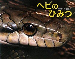 ヘビのひみつ (ふしぎいっぱい写真絵本)の詳細を見る