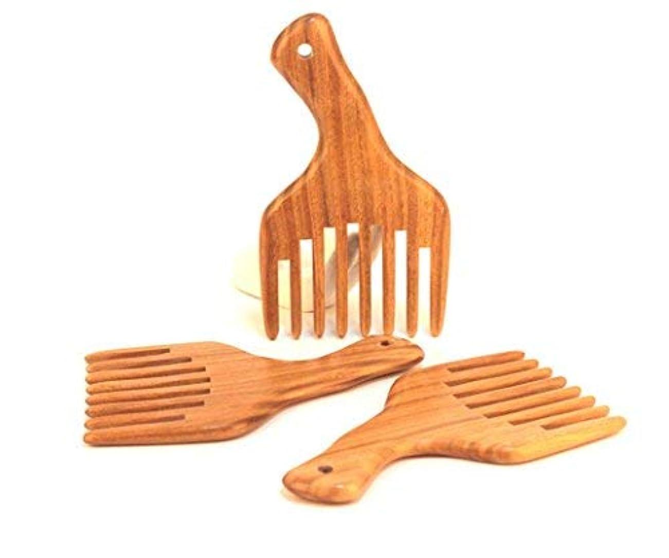 警告するチャンピオンシップ現実的1PC Hot sale Wide Tooth Sandalwood Comb Smooth Detangler Pick For Long Hair or Massive Beard Massages Scalp Anti-Static [並行輸入品]