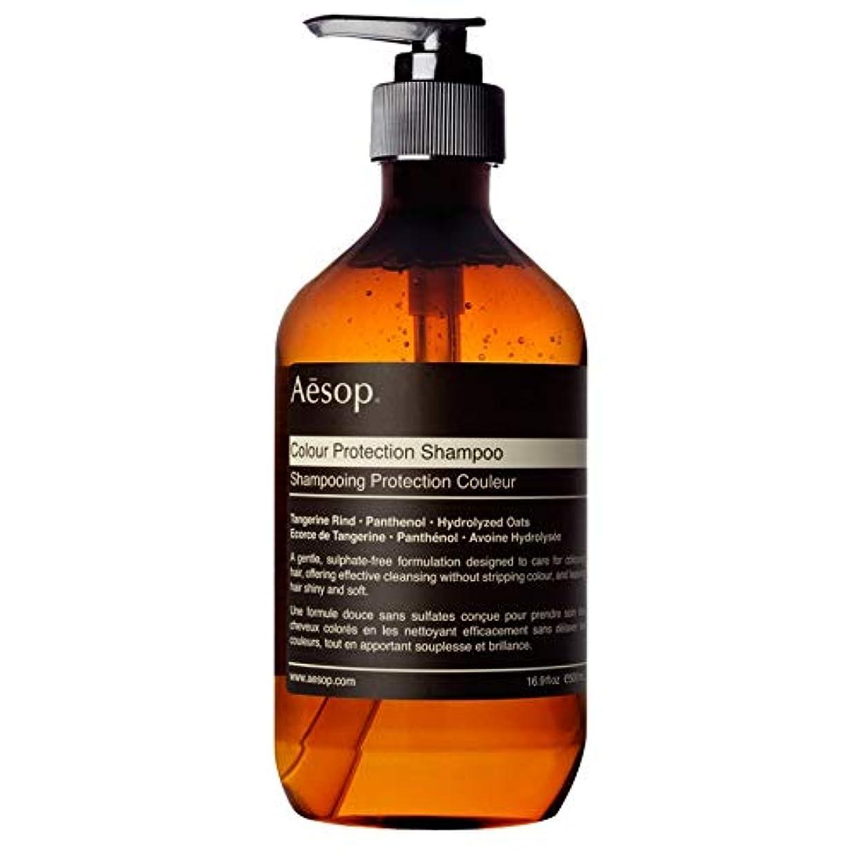 操る軌道職業[Aesop ] イソップ大型カラープロテクションシャンプー - Aesop Large Colour Protection Shampoo [並行輸入品]