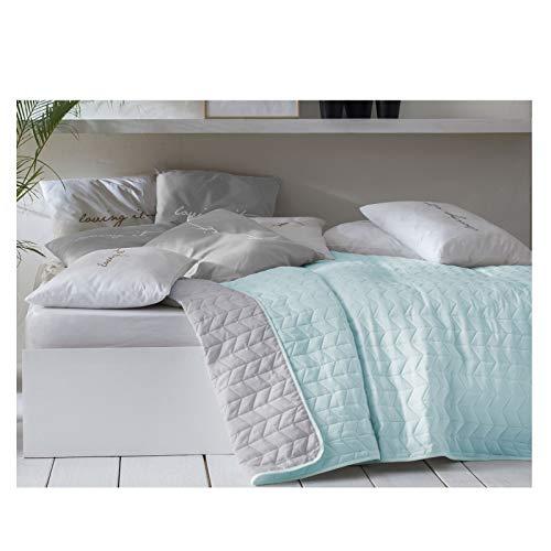 JEMIDI Tagesdecke Bett und Sofaüberwurf gesteppt 220cm x 240cm Überwurf Tagesdecke Sofa Couch Decke Husse Überwürfe Steppdecke XL XXL (Variante 1 Mint/Grau)