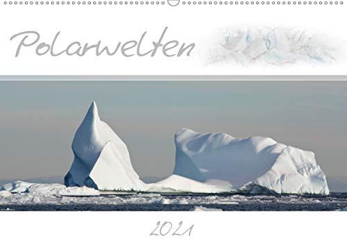 Polarwelten (Wandkalender 2021 DIN A2 quer)