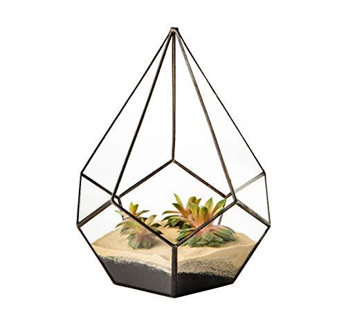 Ultra Diamant Teardrop 20.5x20.5x26.5cm Clear Glass Terrarium Planters Geometrische Form Für die Verlauten des einzigartigen Zentrums oder Windowsills für Luftanlagen Fern Moss Succulents Indoor Garden