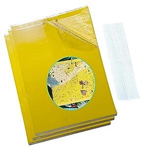 Trampas Adhesivas, Atrapamoscas, 30pcs Trampas para Insectos de Doble Cara con Bridas de 20 cm, Papeles Pegajosos Amarillos Trampas de Moscas(20X 15 cm)