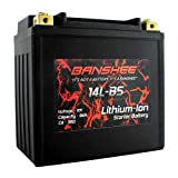 Banshee Lithium Ion Battery Replaces Yuasa YTX14L-BS Lightweight Motorsport Motorcycle