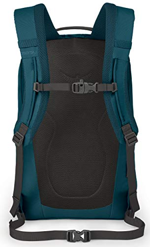 Osprey Packs Axis Laptop Backpack