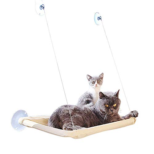 Cat klimrek Layer zuignap Cat Pet Bed Nest Window Balkon Single hangmat Cat Slaapzak Indoor of Outdoor Cats Activity 8bayfa