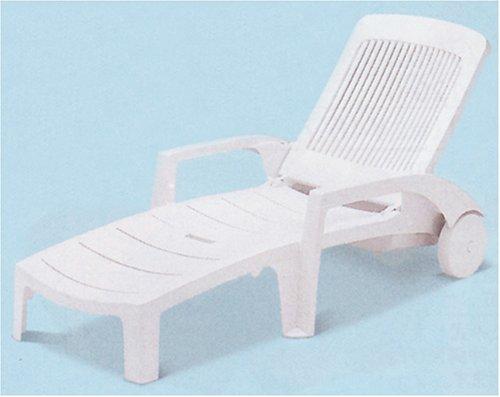 テラモト ガーデンフィジーサンラウンジャー MZ-603-020-8 白