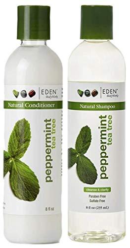 EDEN BodyWorks Peppermint Tea Tree Champú y acondicionador Set 237ml