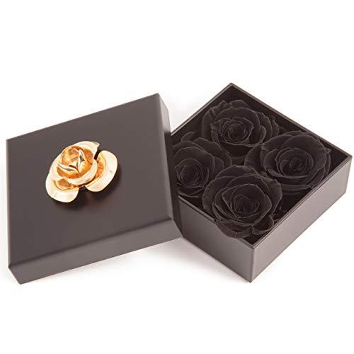 ROSEMARIE SCHULZ Heidelberg 4 kleine Infinity Rosen haltbar 3 Jahre in Box Rose konserviert (Schwarz, 4 Röschen)