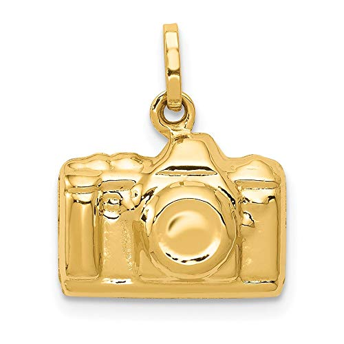 Saris and Things 14k gelbgold 3-d polierte kamera charm