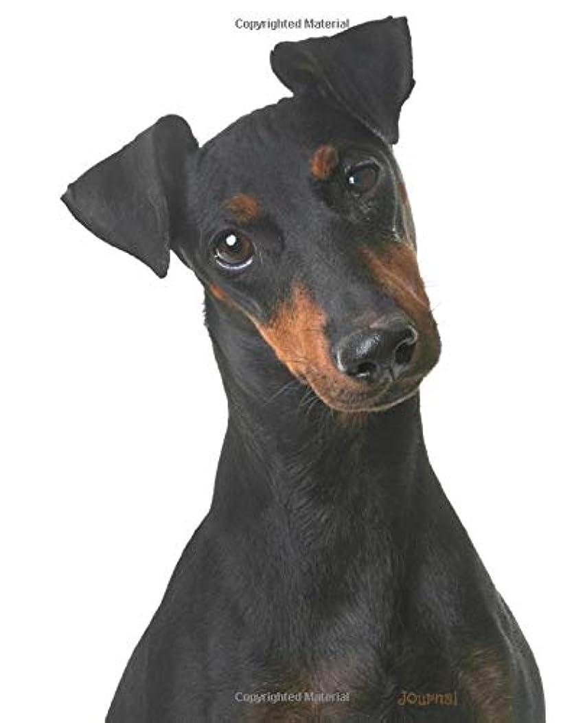 パレード豚甘美なJournal: Manchester Terrier
