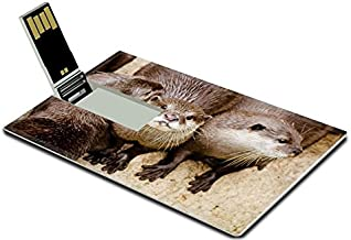 Luxlady 32GB USB Flash Drive 2.0 Memory Stick Credit Card Size Asian Small Otters Image 19508410
