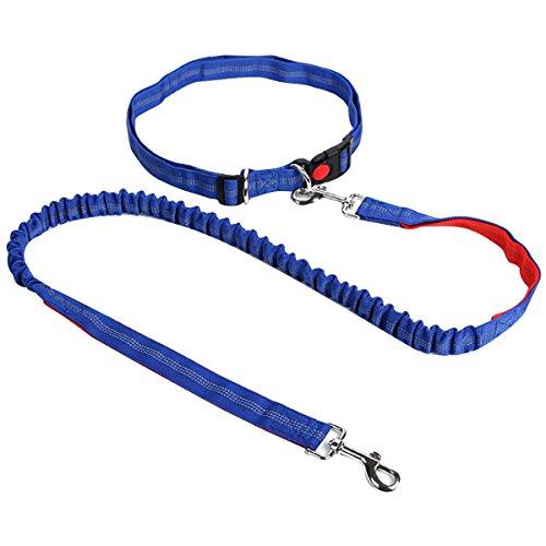 AiSi Hundeleine mit Bauchgurt, Joggingleine, Verstellbare Freihandleine mit Laufgürtel, Jogging Hundeleine für kleine und große Hunde, Leine für Joggen Laufen Wandern Blau