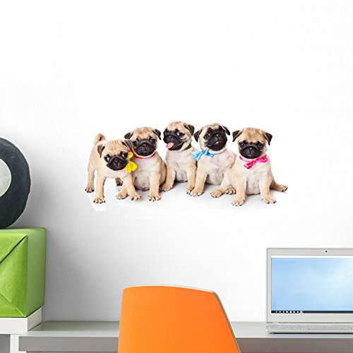 Wallmonkeys Five Puppies Pug Wall Decal Peel and Stick Graphic (18 in W x 12 in H) WM44125