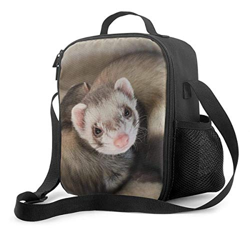Special Cute Ferret Upgrade Lunch Tote Box, Snowflakes Pattern Insulated Cooler Lunch Bag Reusable Picnic School Bag Tote with Adjustable Shoulder Strap and Deck Protection