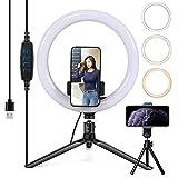 26cm Luz del Anillo, con USB, Regulable, Apto para Live Selfie, de Belleza con luz, Red roja luz de Relleno, Soporte para teléfono móvil de Escritorio, aro de luz LED,26cm Curved Ring Light Set