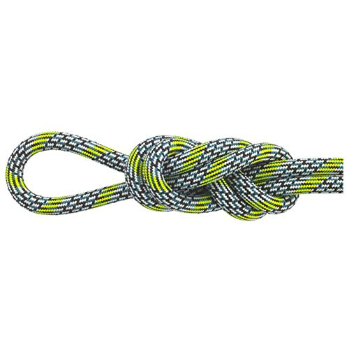 Maxim Glider 10.2 mm UIAA Water-Repellent TPT Dynamic Climbing Rope, Surpass / 2X-Dry, 60 m / 200 ft (New England Ropes Glider)
