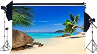 HDサンドビーチの背景10x7ftビニール海辺の背景ココナッツツリーロックブルースカイホワイトクラウド島夏のバーベキュー写真の背景キッズルームの壁紙オーシャンフォトスタジオの小道具26