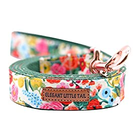 Elegant little tail Dog Leash, Strong and Durable Traditional Style Leash, Webbing Dog Leashs, Soft Walking Leash for Small Medium Large Dogs and Cats