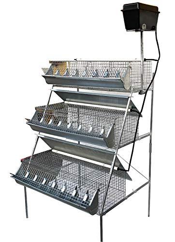 Montidistribuzione Gabbia B3-100 Plus 3 Piani a Piramide per Ingrasso Conigli. Conigliera con 12 Celle. Cm L 105 x P 95 x H 160