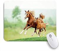 ECOMAOMI 可愛いマウスパッド 栗の馬の牝馬と子馬の牧草地の風光明媚な夏の日の屋外での実行 滑り止めゴムバッキングマウスパッドノートブックコンピュータマウスマット