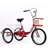 Adult Tricycle with Low Step-Through Aluminum Frame, Front and Rear Fenders, Large Cruiser