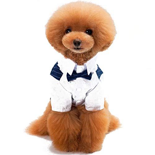 onbekend SAMYUE huisdier kleding huisdier hond pak jurk lente en zomer mode gestreepte bruiloft kleding jas kleine en middelgrote honden