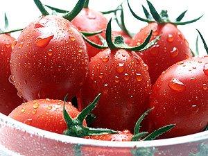 シシリアンルージュ 2kg 北海道産 クッキングトマト