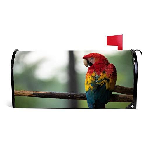 happygoluck1y Funda magnética para buzón de correo con diseño de loro rojo, azul y amarillo, tamaño estándar, para vacaciones,...