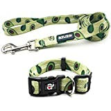 azuza Dog Collar and Leash Set, Fun Avocado Patterns on Nylon Collar and Matching Leash, Great Option for Extra Small Dogs