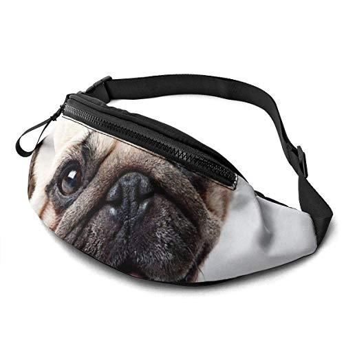 AOOEDM Cute Dog Printed Waist Bag,Fashion Travel Lightweight Fanny Bag Adjustable Sports Running Waist Pack