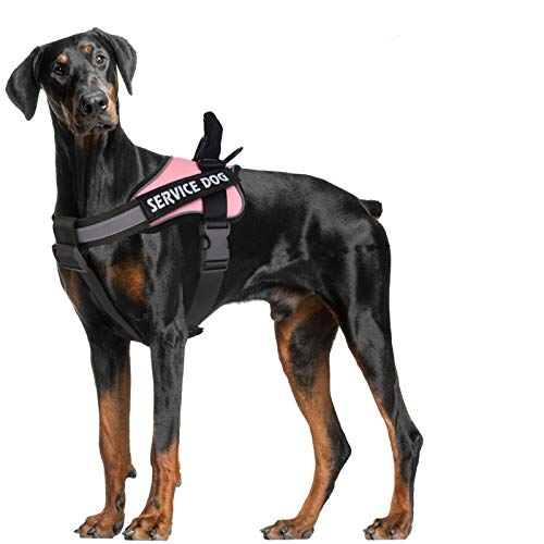 MUMUPET Dog Harness No Pull Pet Harness Adjustable Service Dog Vest For Large Dogs Easy Control, 3M Reflective Oxford Material Vest Outdoor Walking, 2 Metal Rings and Handle No More Tugging or Choking
