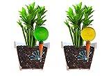 Lot de 4 grands globes d'arrosage par Plantpal De couleur clair, bleu et vert et orange transparent, permet de voir le niveau d'eau. Vacance et quotidien, arrosage automatique des plante