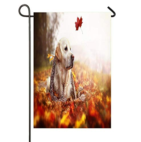One Autumn Leaf in The Wind and a Beautiful Dog Relax time Garden Flag - No Place Like Home Decorative Flags for Outdoors - Best for Party Yard and Home Outdoor Decor